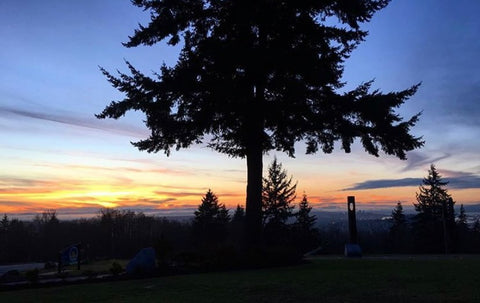 Burnaby Mountain Park