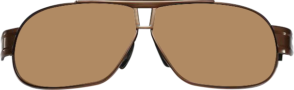 Browline Sunglasses 8516