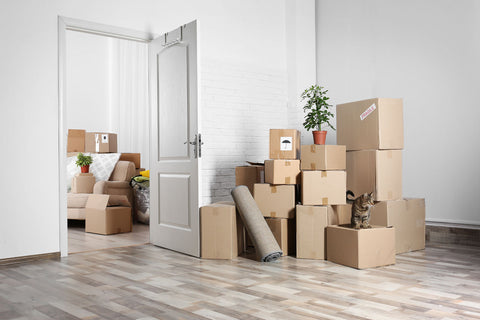 Moving can be stressful and sometimes presents quite a hassle, especially if you don't plan on time and organize it correctly