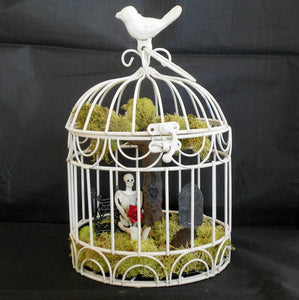 Minimalist Bird Cage Decoration Ideas