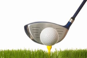29th Annual Auction and Golf Tournament