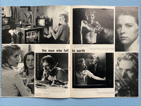 The Man Who Fell to Earth Anglozine