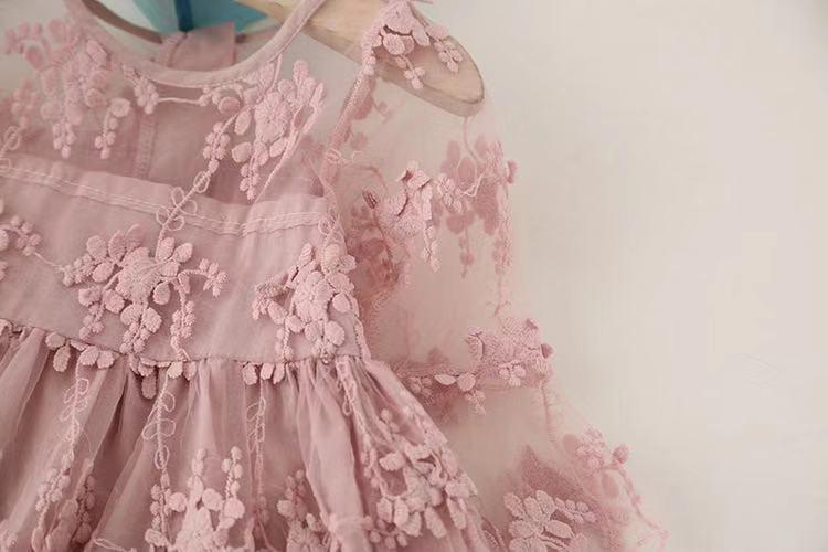 Baby Fairy Embroidered Lace Flower Flare-sleeve Dress for Toddler Girl and Girl