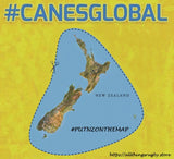 #CANESGLOBAL only one map cares !