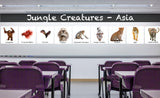 classroom Jungle Creatures of Asia