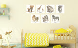 2elephants, 2giraffes, 2 hedgehogs, 2 koalas, 2 owls, 2 tamanduas, 2 zebras repositionable wall decals on child's wall