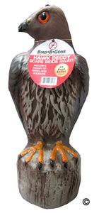 Hawk Decoy Large