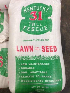 K-31 50# Fescue Grass Seed