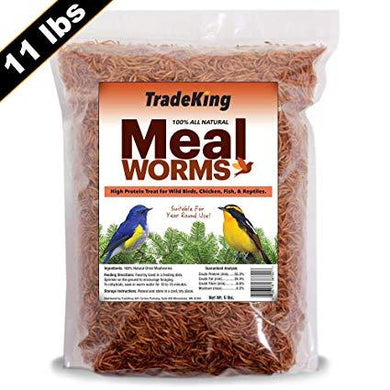 Mealworms Dried 11 lb. bag