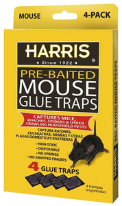 Glue Trap Mouse Tray 4 Pack