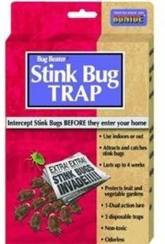 Stink Bug Trap Kit