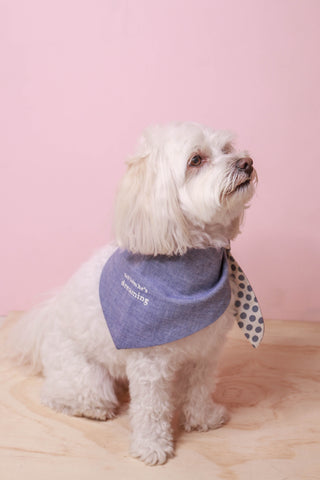 Dog Bandana - Tell Him He's Dreaming - Small Batch