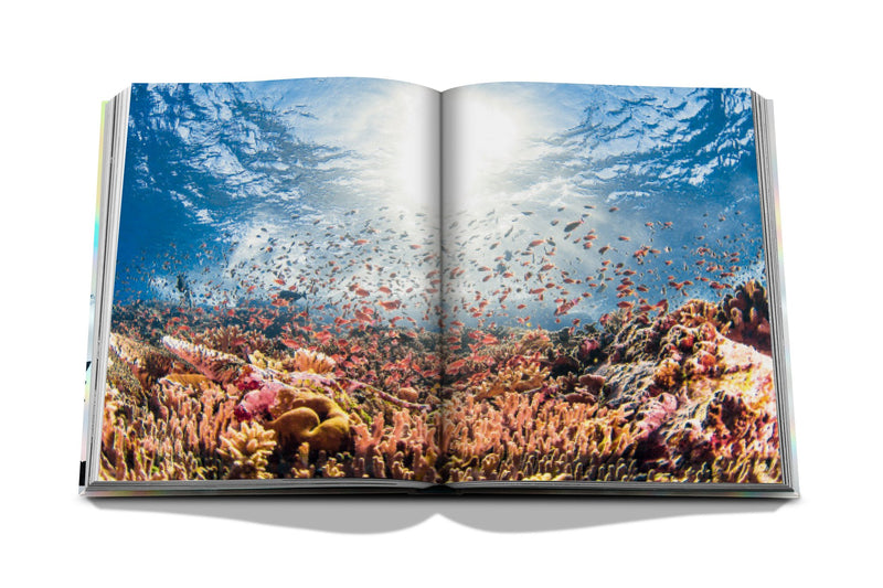 LIVRE ASSOULINE THE CORAL TRIANGLE