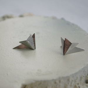 Wing Earrings (silver)