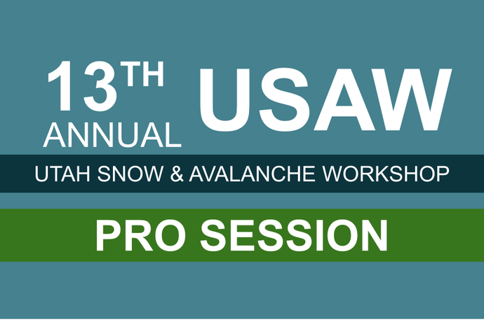 13th Annual Utah Snow and Avalanche Workshop (USAW) Professional Session