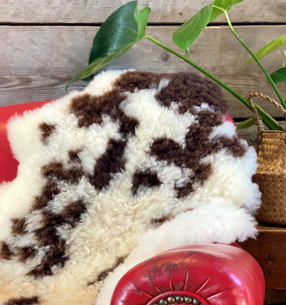 Organically Tanned Jacob Sheepskin Rug