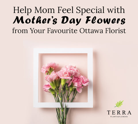 Help Mom Feel Special with Mother's Day Flowers