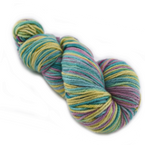 8 Ply Pure Merino Wool Mill Spun Hand Dyed Yarn Soft Rainbow Mix 12420| 8 ply Pure Merino Yarn | Sally Ridgway | Shop Wool, Felt and Fibre Online