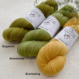 8 Ply Pure Merino Wool Yarn in Everlasting| 8 ply Pure Merino Yarn | Sally Ridgway | Shop Wool, Felt and Fibre Online