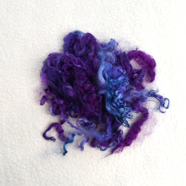 Tasmanian English Leicester Lamb Locks - Hand Dyed Blue Grape 13318| English Leicester Wool Tops | Sally Ridgway | Shop Wool, Felt and Fibre Online