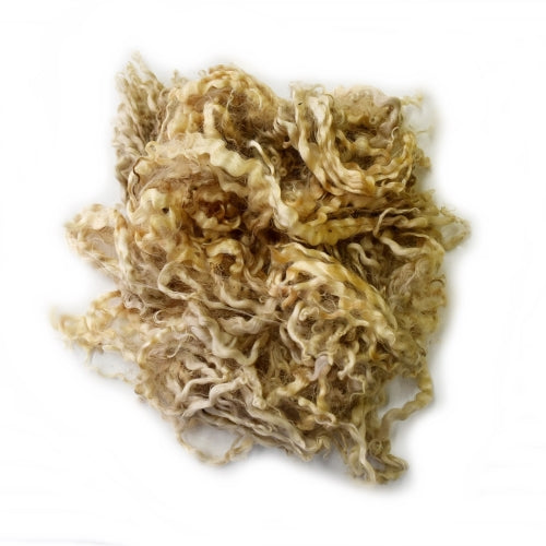 Tasmanian English Leicester Lamb Locks Raw Fleece 100 grams| English Leicester Wool Tops | Sally Ridgway | Shop Wool, Felt and Fibre Online