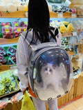 Breathable Pet Carrier Bag Capsule - Catbulous