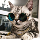 HotCatz™ Shades - Catbulous