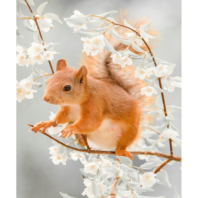 5d diamond painting squirrel flower pattern home decoration full square drill diamond mosaic handicraft 3d round diamond