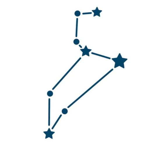Zodiac Constellation Temporary Tattoo