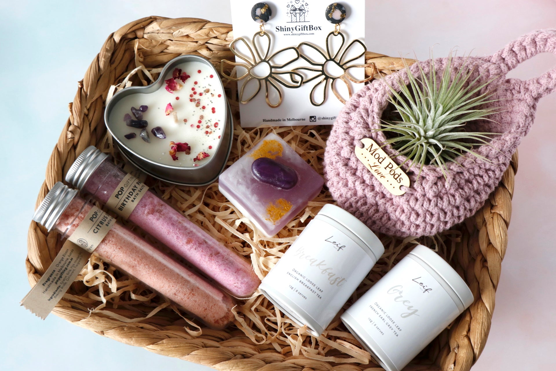 Air Plant / Plant Killer Gift Set - Curated Handmade Gifts