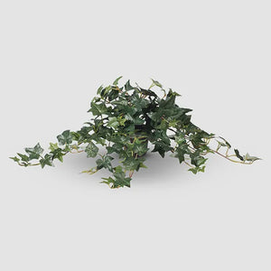 Ivy Sage Hanging Bush - Artificial