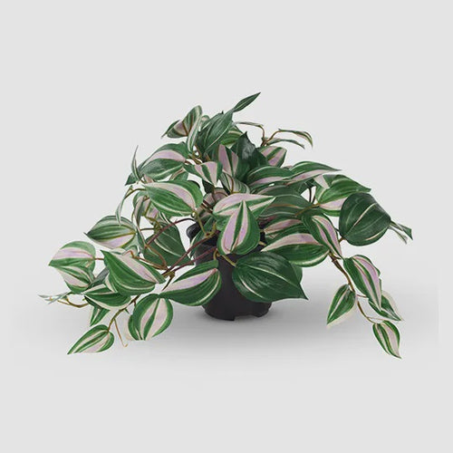 Wandering Jew Hanging Bush - Artificial