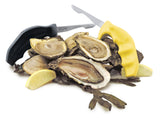 Shucker Paddy Original Oyster Knife in Black and Yellow pictured with opened oysters
