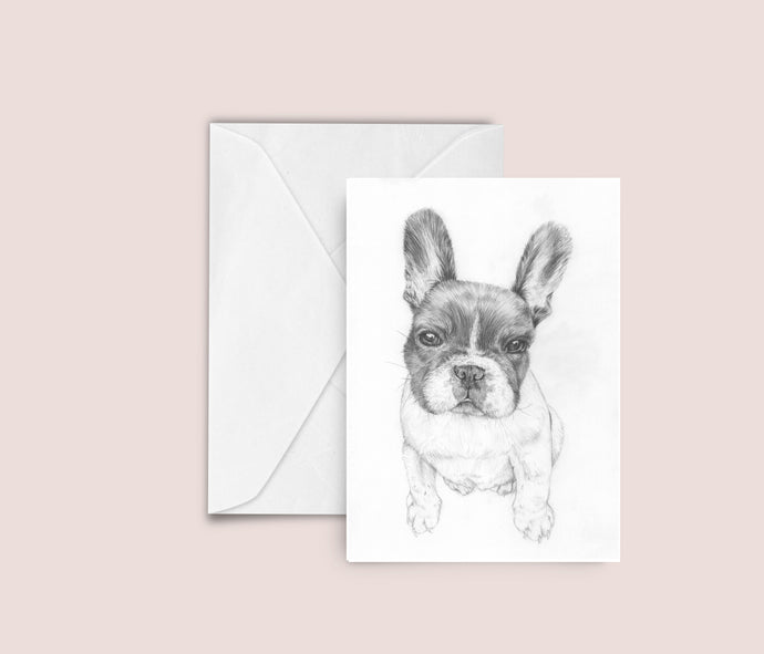 'Pablo' french bulldog illustration blank greeting card