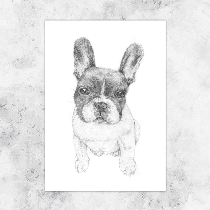 Pablo French Bulldog Art Print