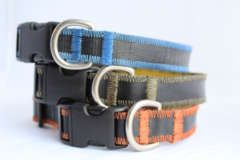 Wonder Dog - HERO Collars