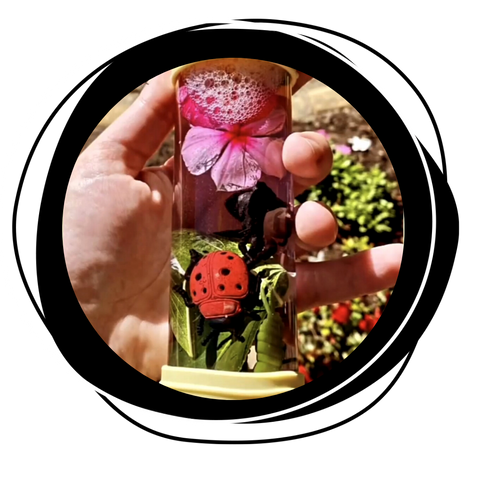 Flowers and insects in diy calm down bottle