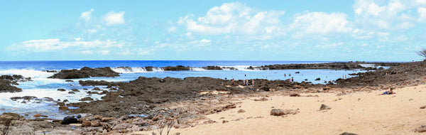 Shark's Cove North Shore Oahu