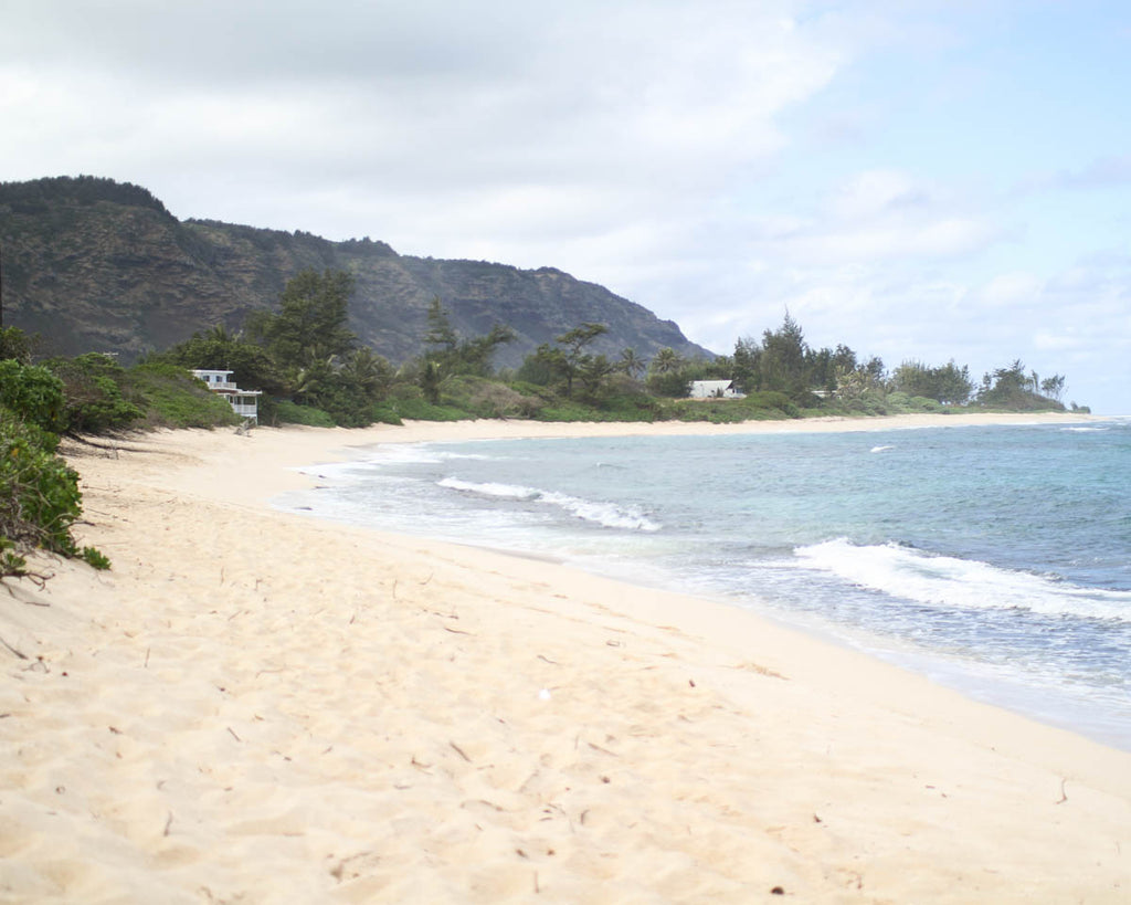 Mokuleia Beach Park, across from Dillingham Airfield