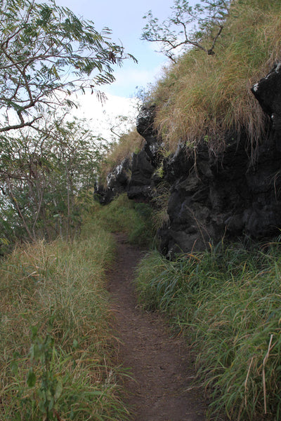 Kealia Trail, North Shore, Oahu