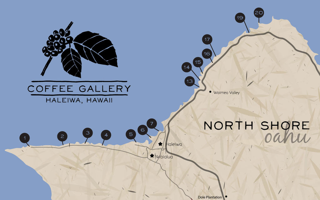 North Shore Beaches Guide