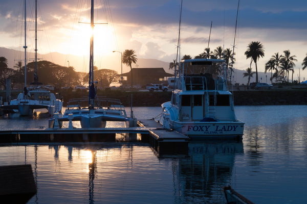 Haleiwa Boat Harbor at sunset © Coffee Gallery