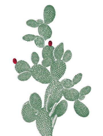 RACKET CACTUS WALL STICKER