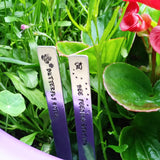 Personalised Metal Plant Herb Garden Markers-Plant Markers-Sparkle & Dot Designs