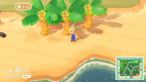 Animal Crossing: New Horizons | Selling and Floating Gifts