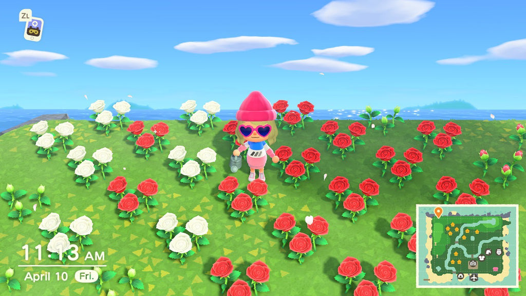 red and white roses animal crossing new horizons