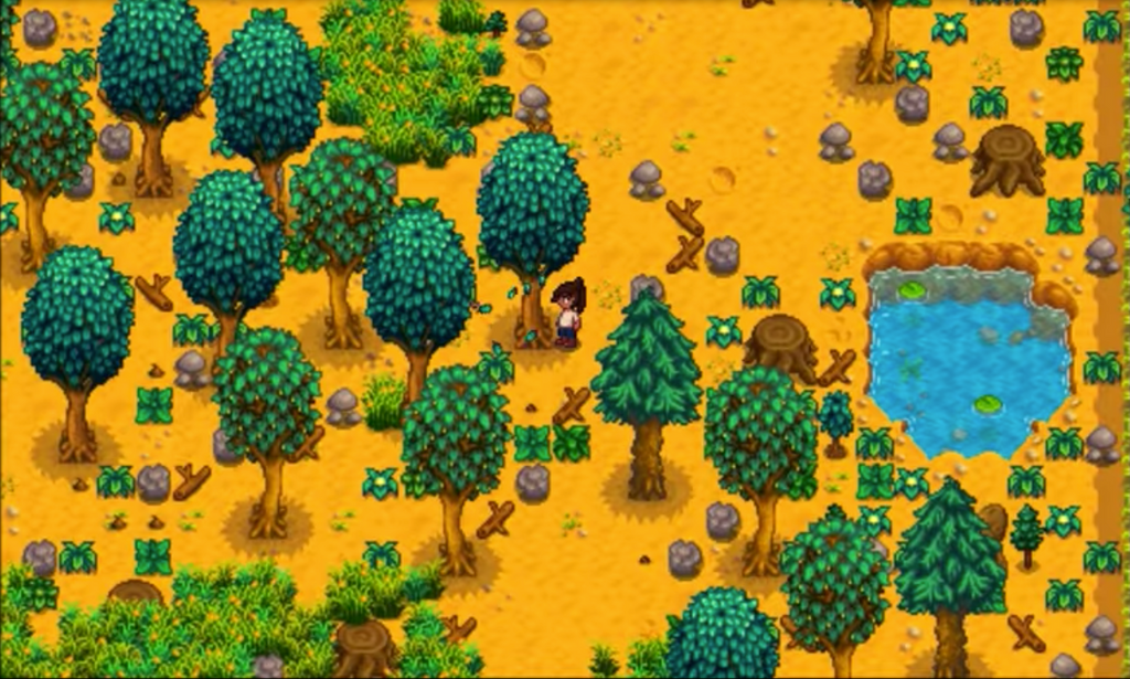 New farm stardew valley guide