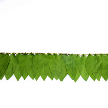 Load image into Gallery viewer, Eco-Friendly Mango Leaves Toran(6ft long)