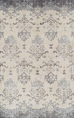 Shop Dalyn Antigua Pewter Rug at  Raley's Home Furnishing