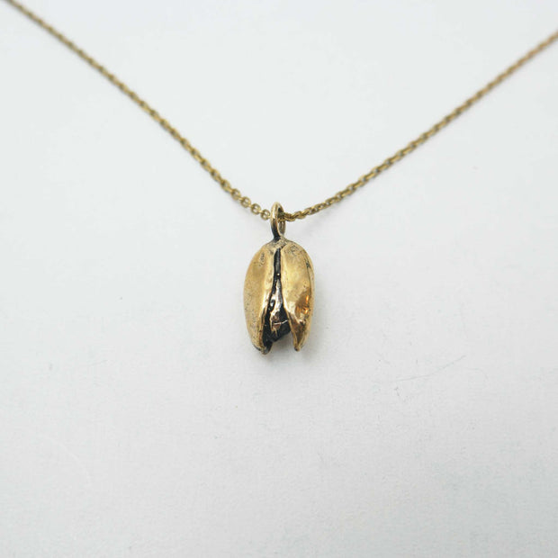 Pistachio Necklace in Brass